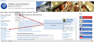Library Page Databases Instruction